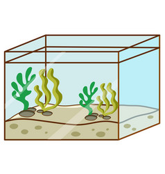 Fishtank with no fish inside on white background vector