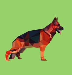 German shepherd dog low polygon style vector