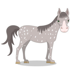 gray spotted horse cartoon style vector image