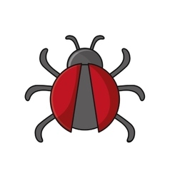 Isolated bug insect design vector image