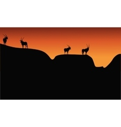 Silhouette of antelope on mountain vector
