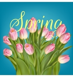 Spring background template EPS 10 vector