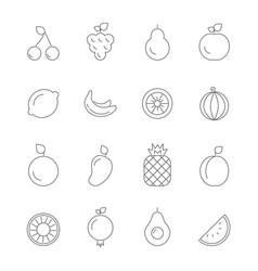 various icons of fruits vegan symbols isolate vector image