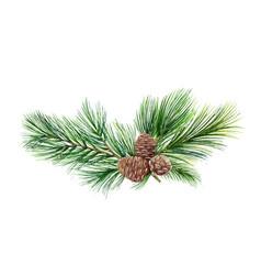 Watercolor green spruce wreath with cones vector