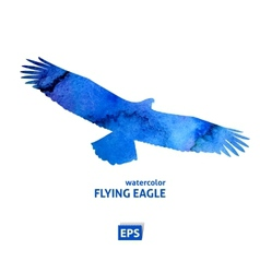 Watercolor flying blue eagle vector image vector image