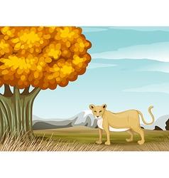 A cheetah near the big tree vector