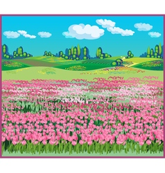 picturesque landscape with tulips vector image vector image