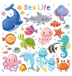 sea animal in childrens style vector image
