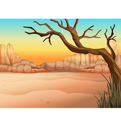 A desert with a tree without leaves vector