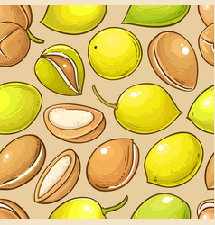 argan nuts pattern on color background vector image