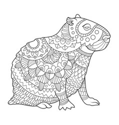capybara coloring book vector image