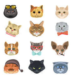 Cartoon cats and hipster kittens face muzzles vector