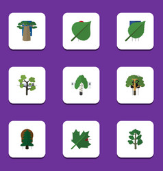 flat icon bio set of timber oaken forest and vector image