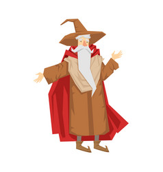 old bearded wizard in the pointed hat colorful vector image vector image