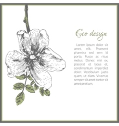 Eco card template design with dog-rose flower vector