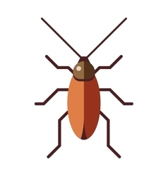 Cockroach dirty broun pest and disgusting roach vector image