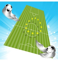 Flying football soccer pitch and balls vector image vector image