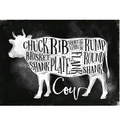 Beef cutting scheme chalk vector