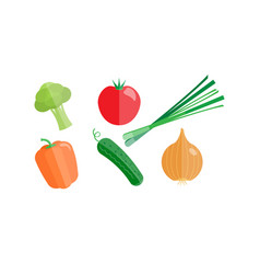 collection of vegetables broccoli tomato onion vector image