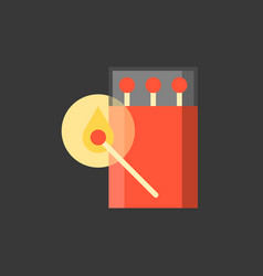 Match stick and box icon in night scence vector