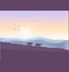 Mountains bears sunset vector