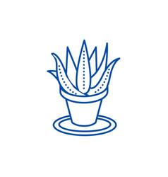 succulents aloe pot line icon concept succulents vector image