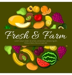Fresh and farm fruits banner vector image
