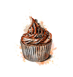 chocolate cupcake from a splash watercolor vector image