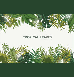 Horizontal background with green leaves of vector