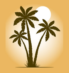palm trees and sunset isolated on background vector image
