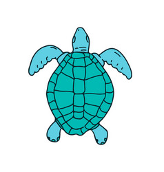 Sea turtle swimming drawing vector