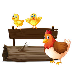 wooden sign with two chicks and hen vector image vector image