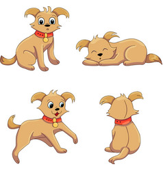terrier positions vector image