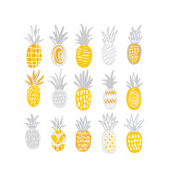 Collection of hand drawn pineapples of different vector
