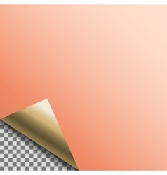 Curled copper foil blank tag vector image