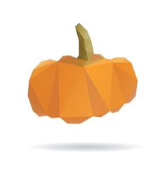 Pumpkin abstract isolated on a white vector image vector image