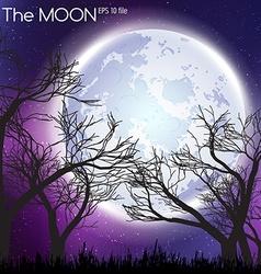 Moon in dark night background vector image vector image