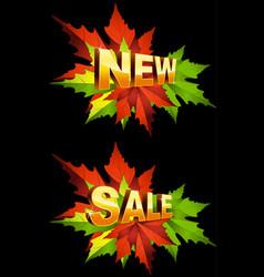 autumn new sale vector image