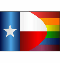 Grunge texas and gay flags vector
