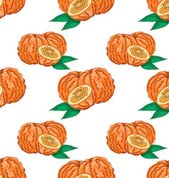 Seamless pattern with Bitter Orange vector