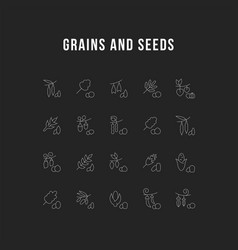 Set line icons grains and seeds vector