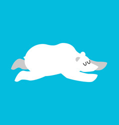 sleeping polar bear arctic and antarctic animals vector image