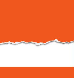 Torn a half sheet of orange paper from the bottom vector