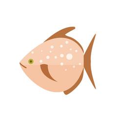 Sea fish isolated icon vector