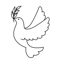 dove of peace flying with olive branch vector image
