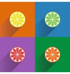 Collection of four citrus fruits icons in flat vector image vector image