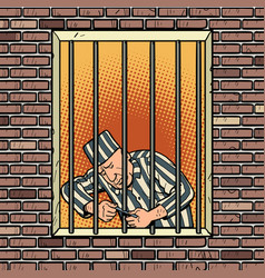 a prisoner escapes from prison jailbreak vector image