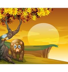 A sad bear and a bee near the cliff vector image