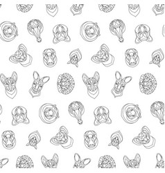 australian animals outline coloring seamless vector image
