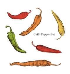 Chilli peppers color sketches set vector